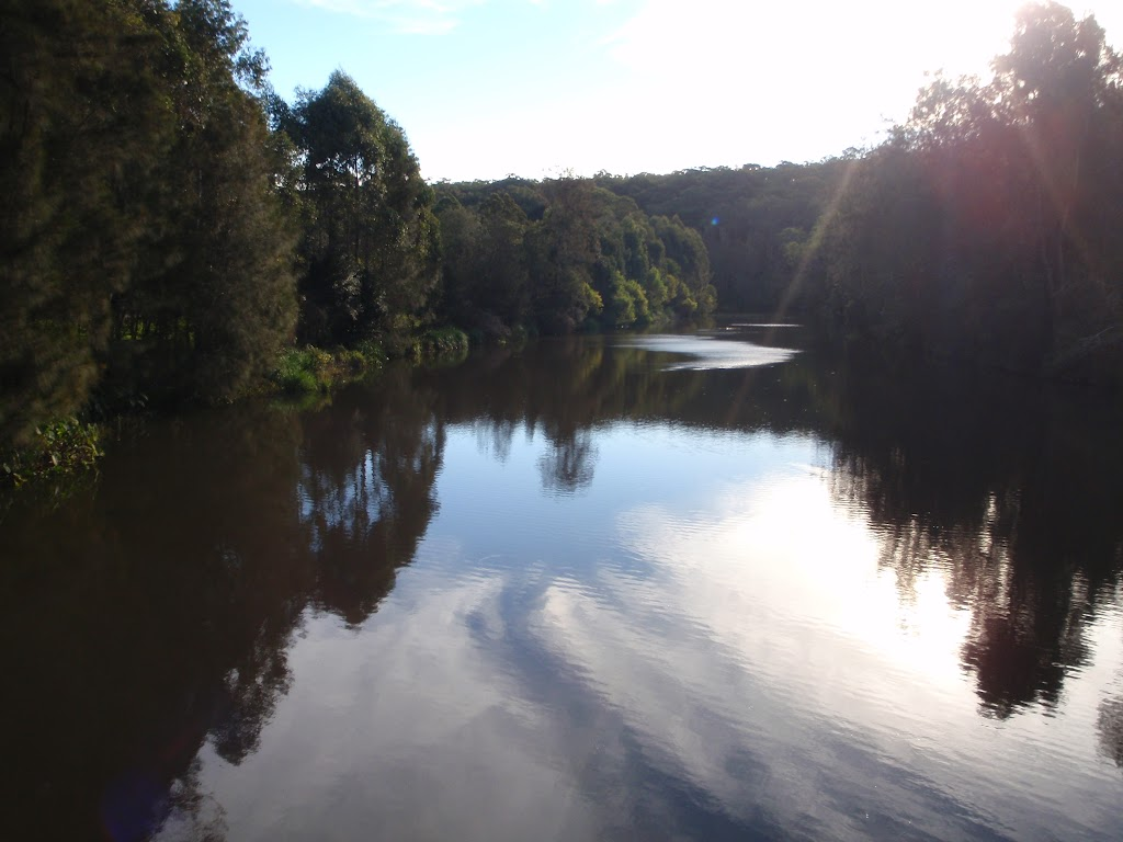 Lane Cove River (54974)