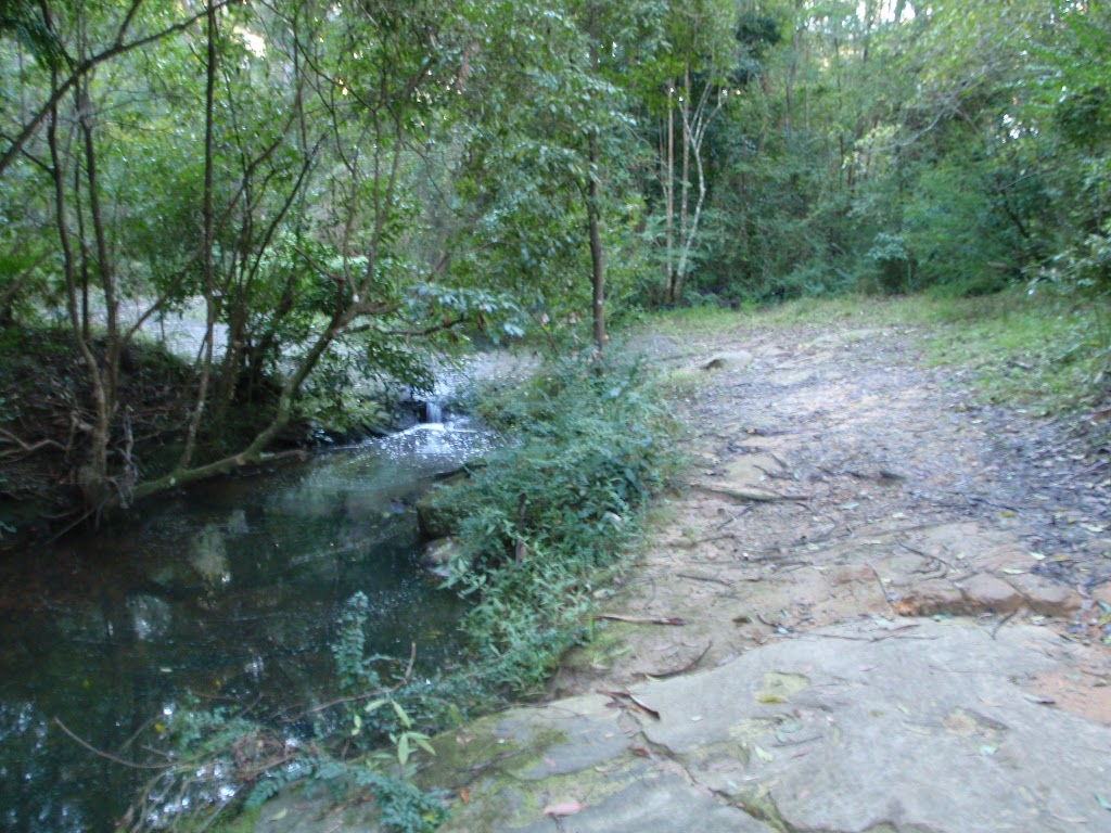 Blackbutt creek next to servicetrail (55100)