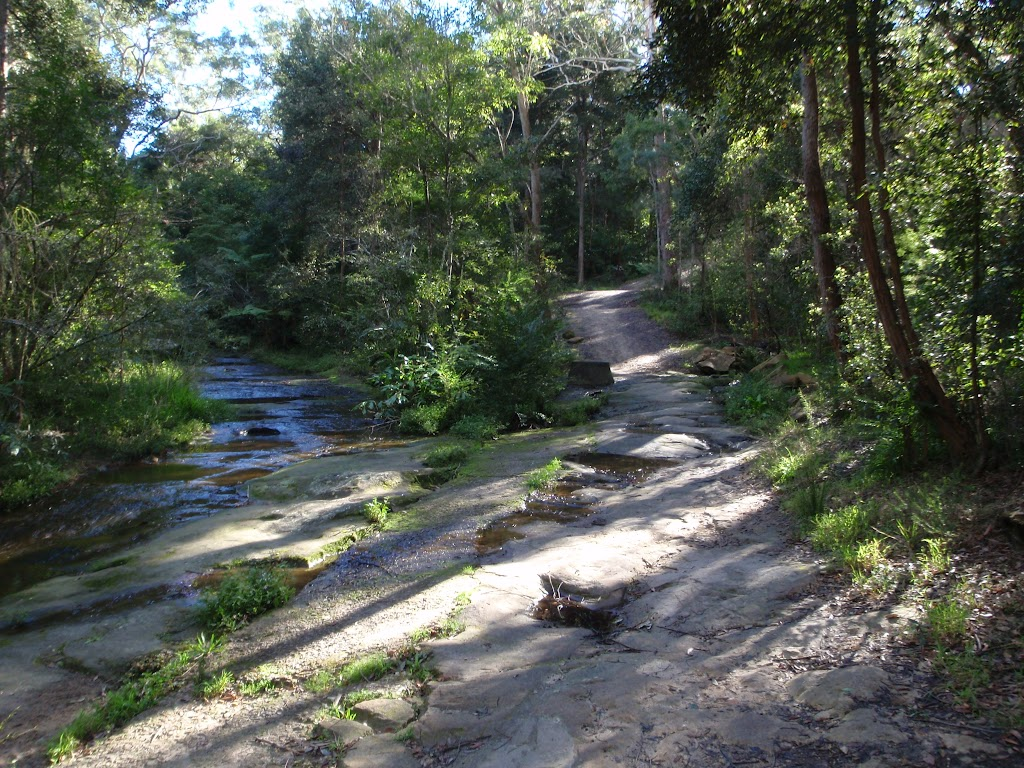 Track along Blackbutt Creek