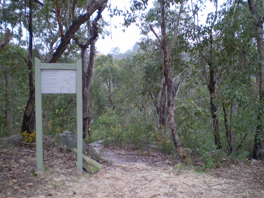 Int of Great North Walk and Canoon Rd Servicetrail