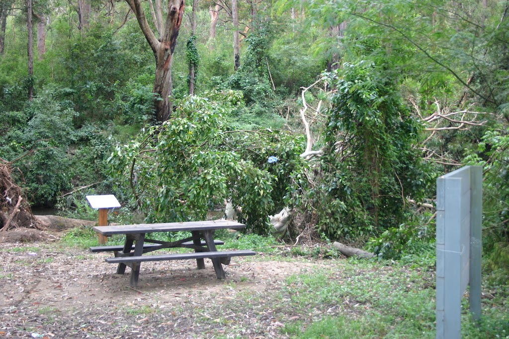 Browns Waterhole Picnic Area (5577)