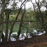 Lane Cove river (oppersite Fairylands)