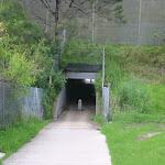Tunnel under the M2 Motorway (5586)