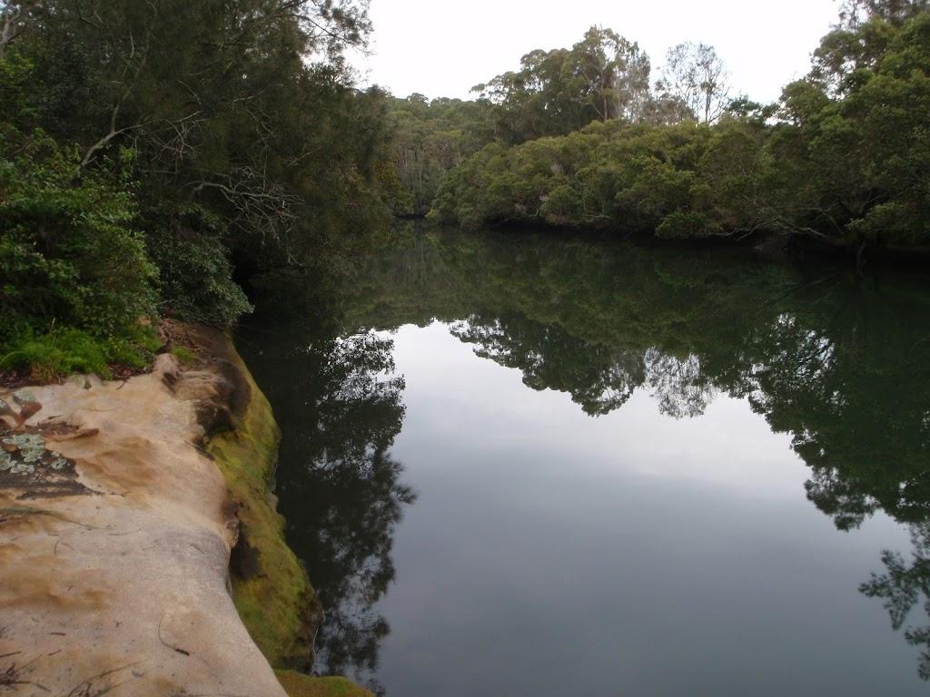 Rocky edge to Lane Cove river