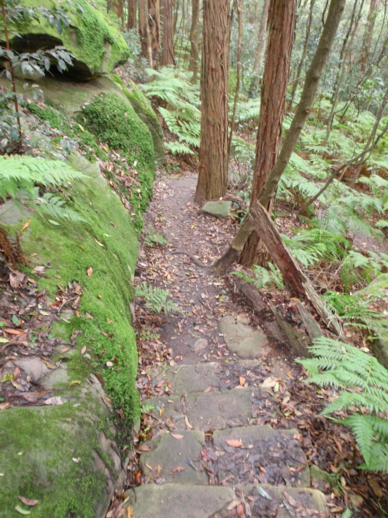 Track up through mossy rocks