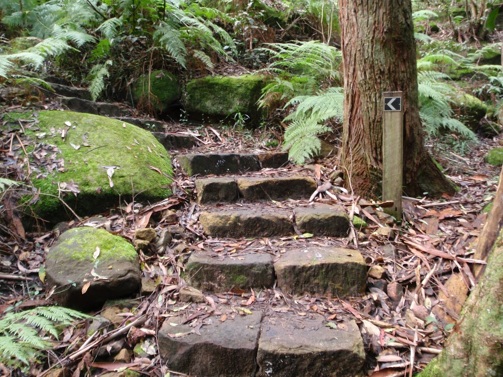 Stone steps along the track