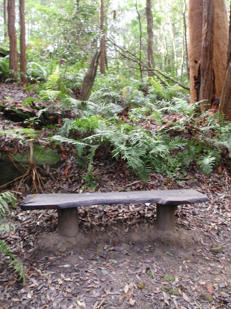 Bench along walk