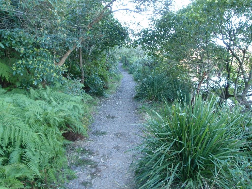 Track east of Ellery's Punt Reserve