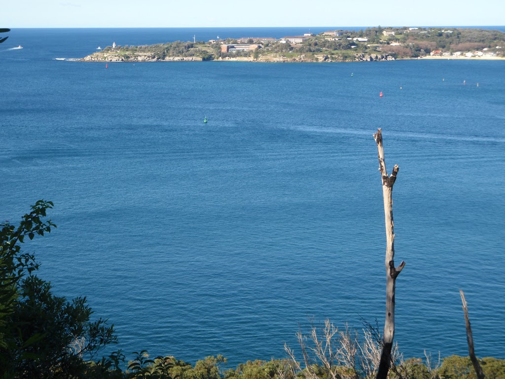 View of Sydney Heads from north of Georges Heights