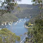 First Hill Looking Down at Berowra Waters