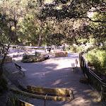 Galston Gorge (5746)