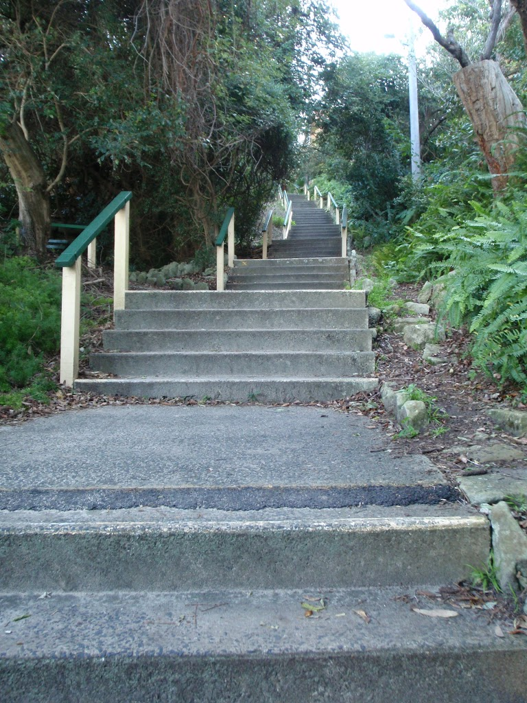 Steps above Clifton Gardens (57572)