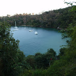 Lookout over Taylors Bay (57611)