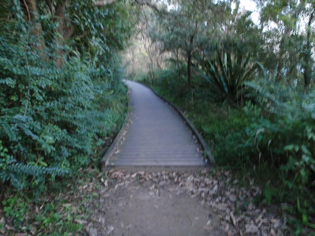 Borogegal Track