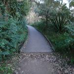 Borogegal Track (57731)