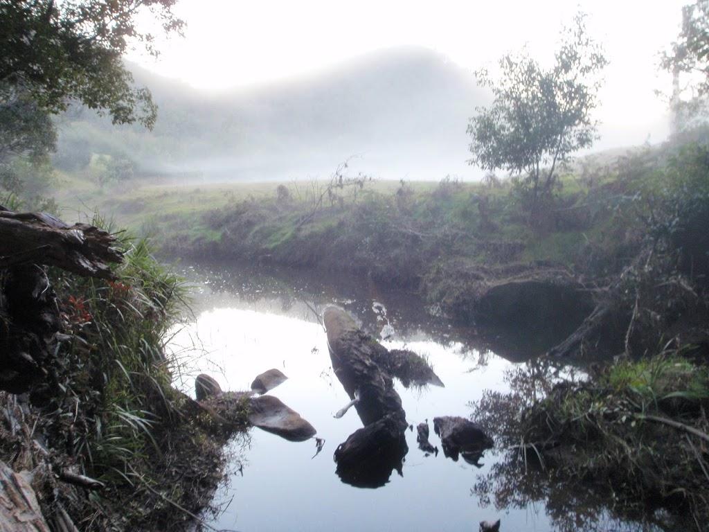 Creek crossing in farm