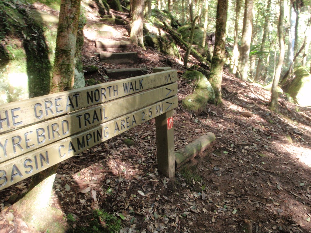 GNW sign on the Lyrebird Trail (58826)