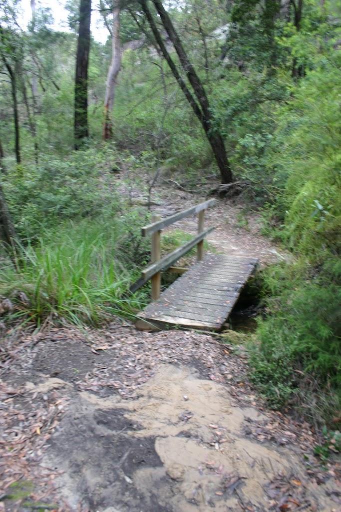 small bridged creek