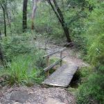 small bridged creek (5887)