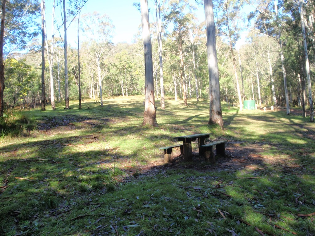 Basin campsite with open clearing and picnic tables (58880)
