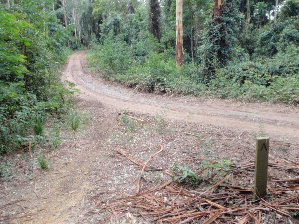 int of warrawolong road