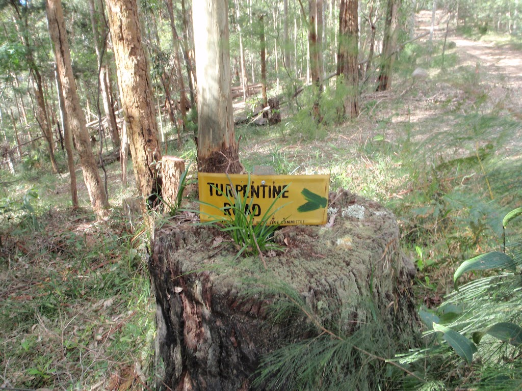 Old road signs in Watagan State Forest