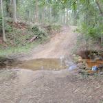 Farm road (59750)