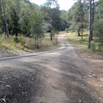 Road to Congewai valley (59771)