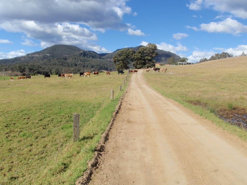Walking through farm land in Congewai Valley