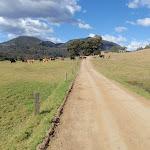 Walking through farm land in Congewai Valley (59801)