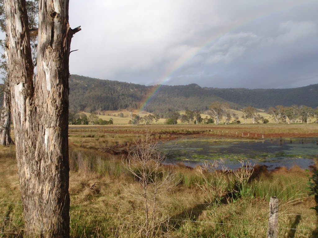 Rainbow from Congewai Valley East trackhead (60141)