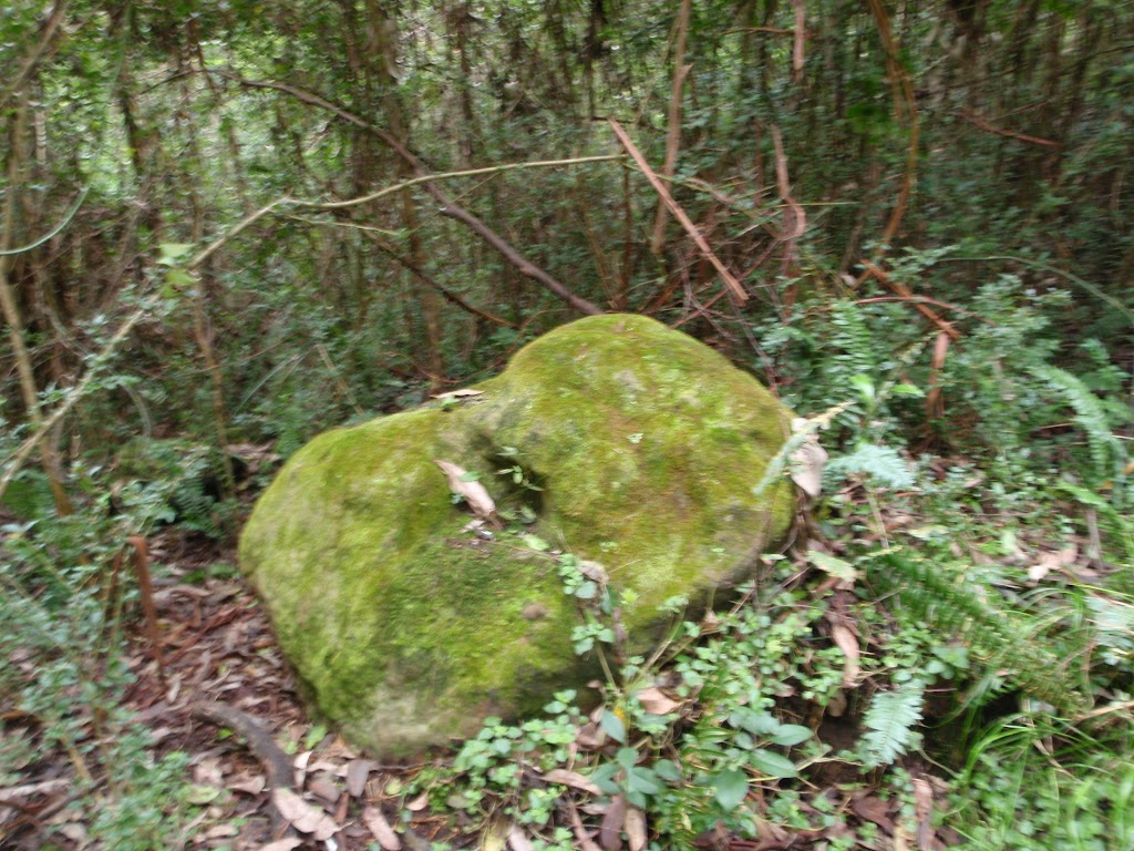 moss covered rock (60446)