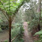following the creek (60653)