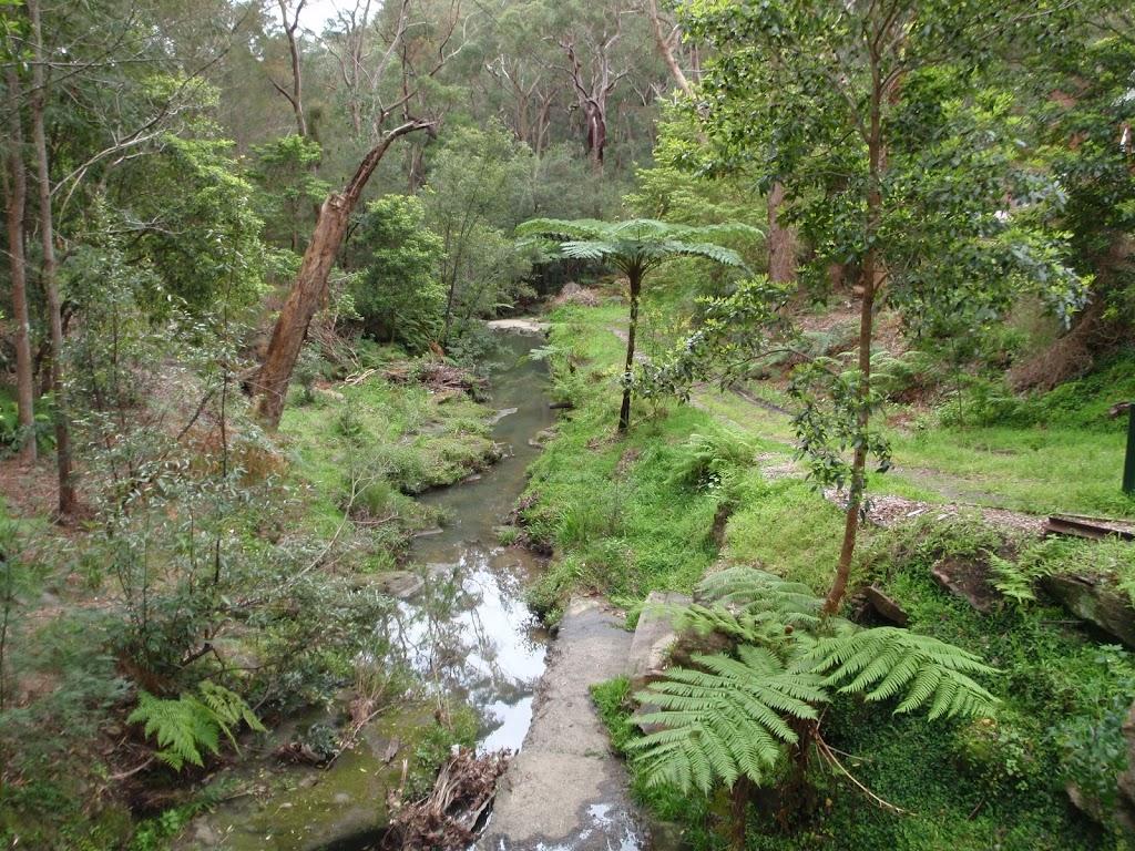 view of a Waitara Creek branch
