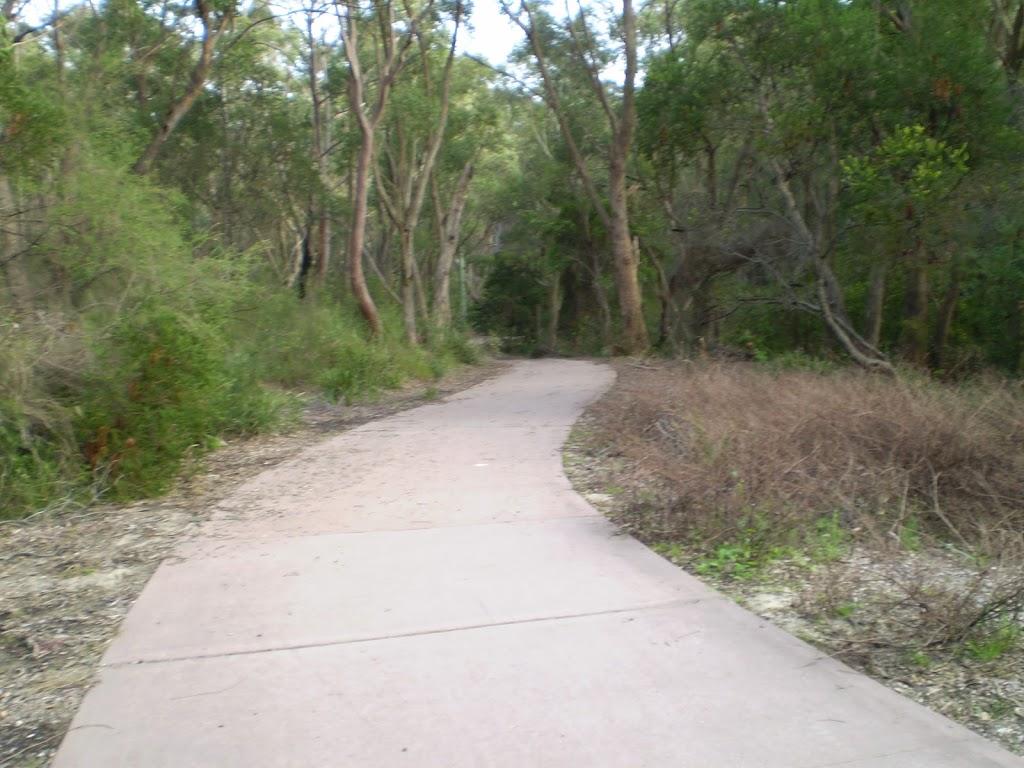 The Jungo pathway
