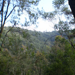 A first look at the Berowra Valley