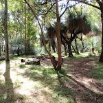 Barraba campsite