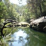 Waitara Creek (6196)