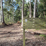 Signpost near Macleans Lookout on the Great North Walk