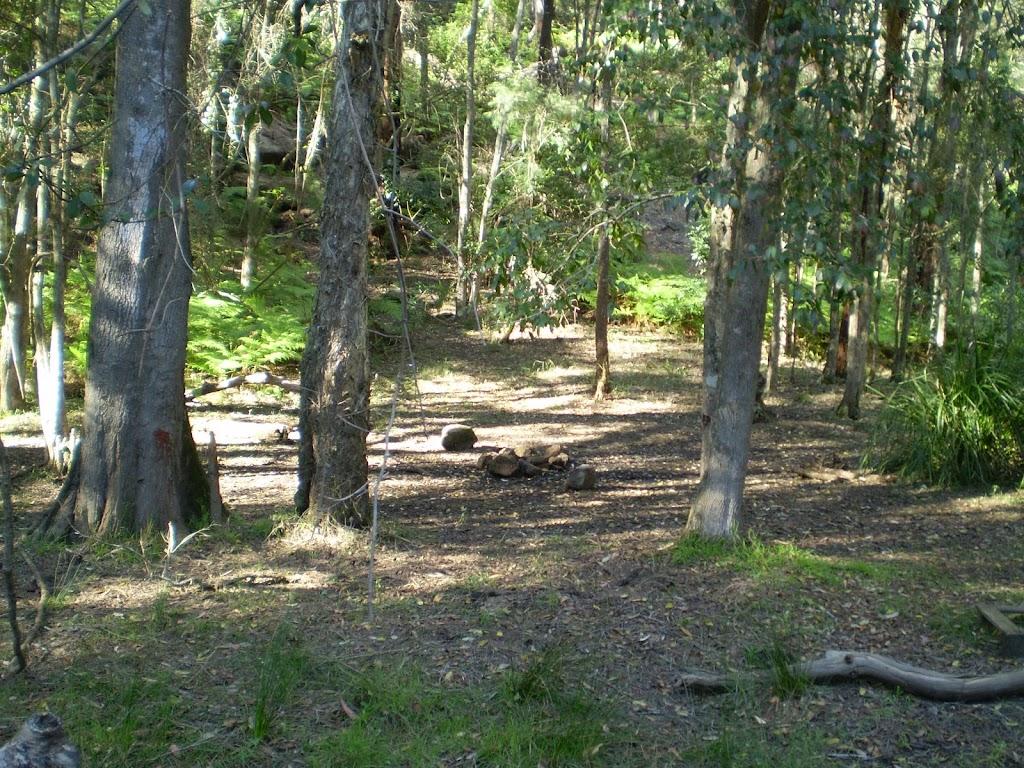 small Great North Walk campsite