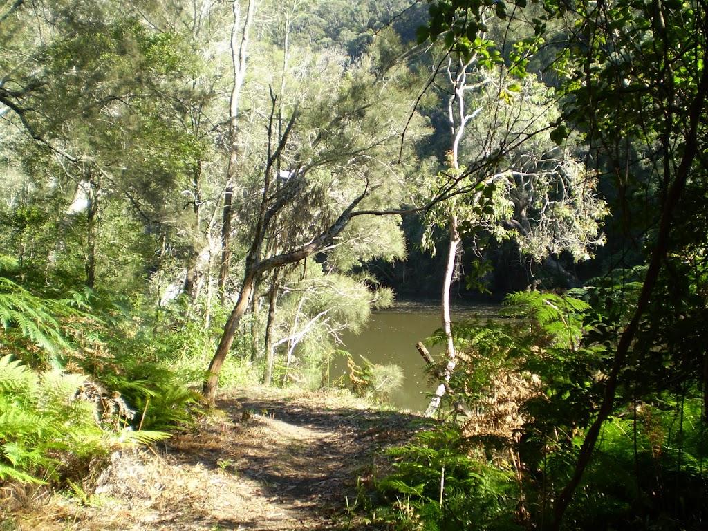 Berowra creek