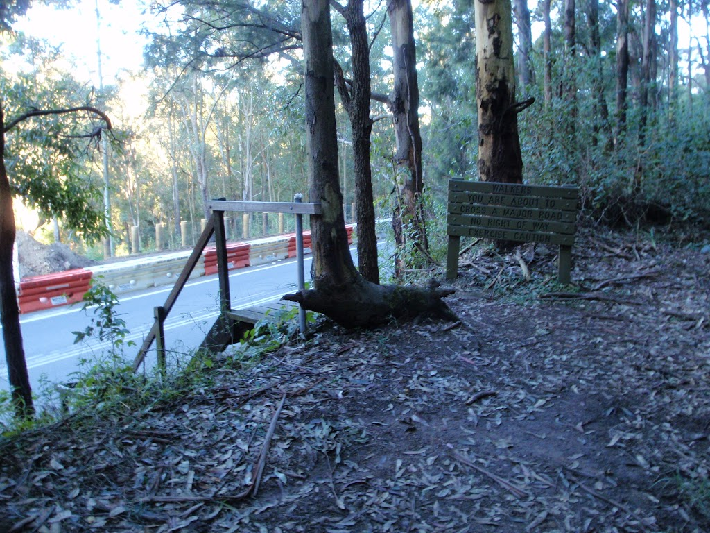 steps down to Freemans drive