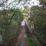 pipe bridge (fenced off) (63800)