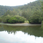 Berowra Creek just out of Crosslands (6382)