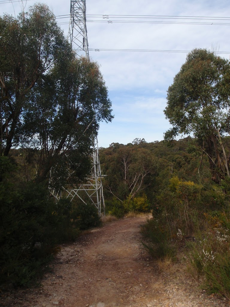 service trail winding under powerlines (64070)