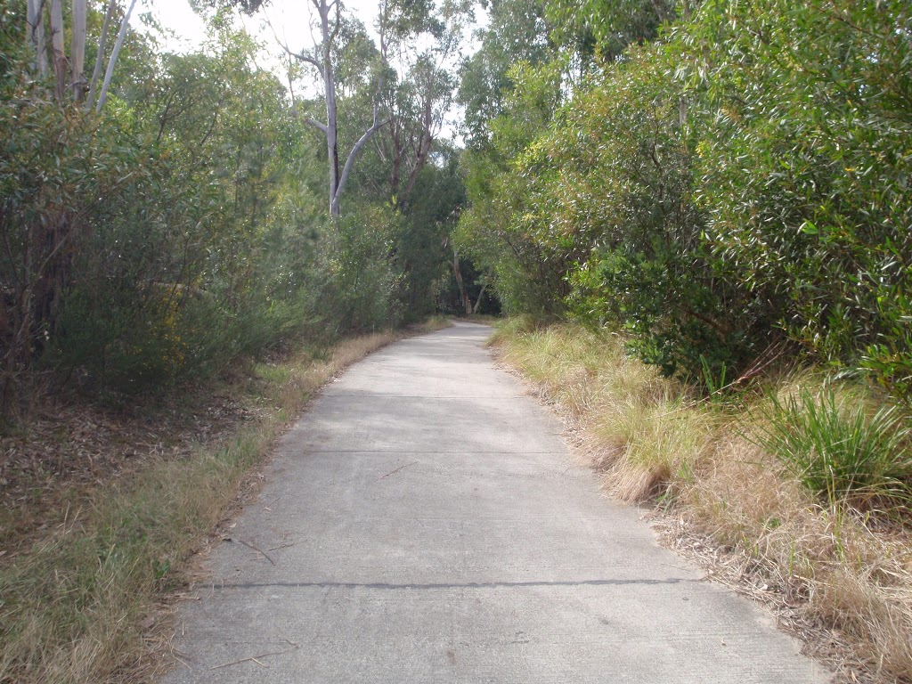 Between Kissing point road and Lane Cove River