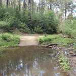 Creek crossing in Lane Cove Valley