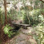 crossing a bridged creek (64517)
