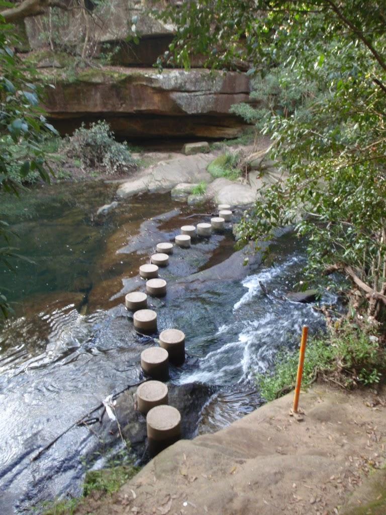Berowra creek Stepping stones