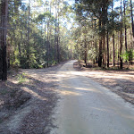 Palmers Rd in the Watagans